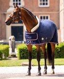Dutch Crown _