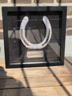 Sparkling horseshoe